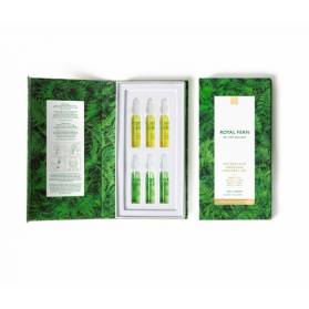 ROYAL FERN PHYTOACTIVE AMPOULES EXPLORER SET